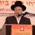 Harav-Shlomo-Englard,-Radziner-Rebbe-explaining-the-shita-of-the-Baal-Hatecheles-ztl